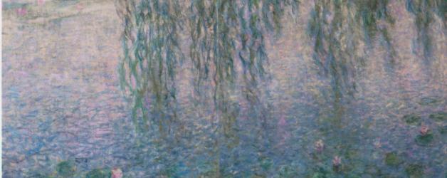 le musée de l'orangerie, les Nymphéas de Monet et la collection Walter et Guillaume
