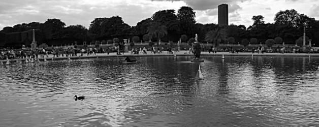 le jardin du Luxembourg à Paris au mois d'aout #1,