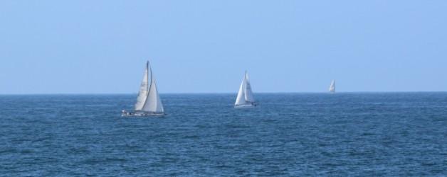 la côte sauvage #2,