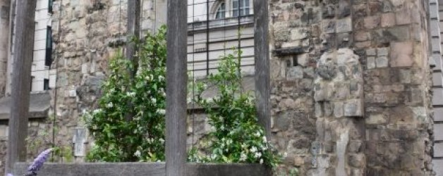 Londres Greyfriars garden: