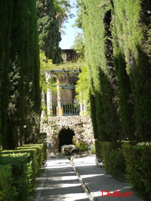 Les jardins du r al alcazar suite dhelicat - Quand tailler la vigne en treille ...