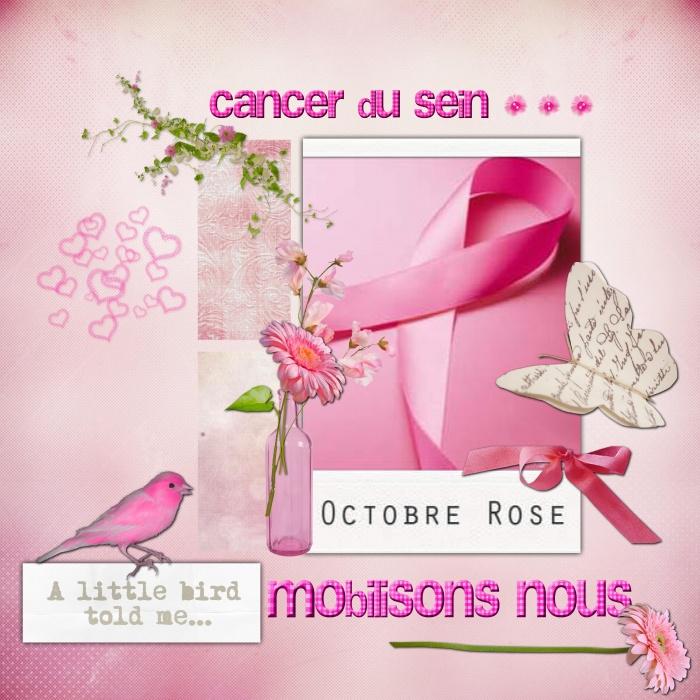 Realisation_du_14-10-13 cancer du sein