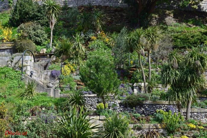 jardin en pente raide image espces couvresol ou vivaces conqurantes retiennent la terre p. Black Bedroom Furniture Sets. Home Design Ideas