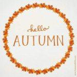 en vrac c'est l'automne