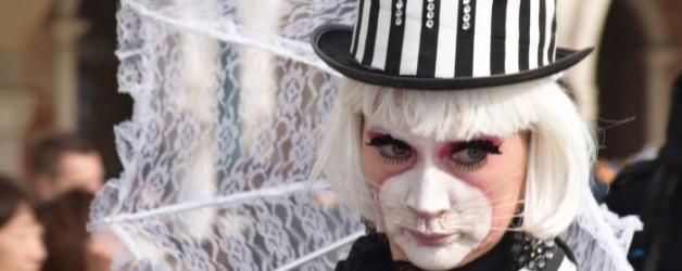 le carnaval d'un chat à Venise,