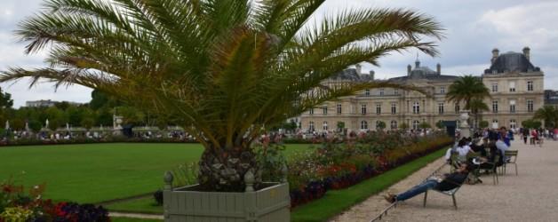 le jardin du Luxembourg à Paris au mois d'aout #2,