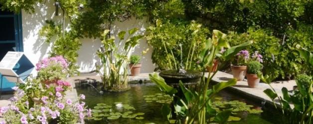 les patios de Viana #1